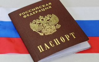Гражданство Российской Федерации: понятие и принципы