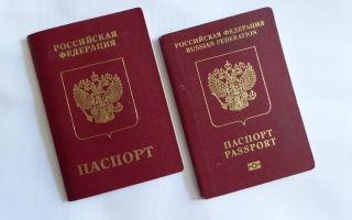 Оформляем загранпаспорт: какой лучше старый или новый