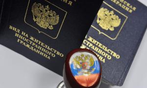 Какие права дает вид на жительство в России