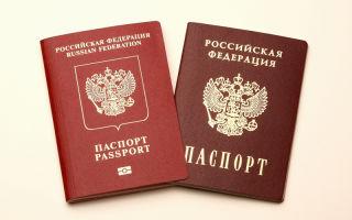 Что нужно, чтобы получить гражданство РФ в общем и упрощенном порядке?