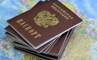 Принципы и основания получения гражданства РФ, ограничения для прохождения процедуры