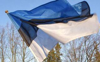 Что можно и что нельзя провозить с собой в Эстонию из России