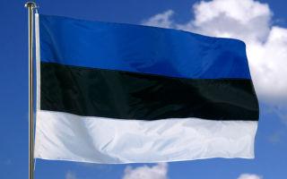Иммиграция в Эстонию: процедура получения вида на жительство