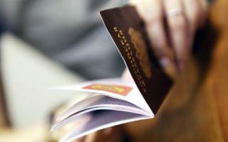 """Проверка паспорта на действительность, готовность, наличие в """"черном списке"""" по базе ГУВМ (ФМС)"""
