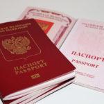 Как осуществить проверку готовности загранпаспорта по номеру российского паспорта?