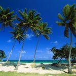 Как заполнить миграционную карту Доминиканы
